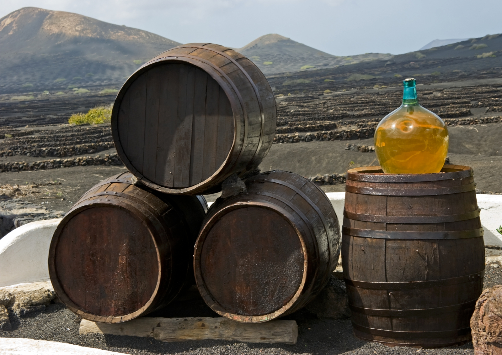 'Wine barrels on background vines and mountains , Lanzarote; Canary islands.' - Lanzarote